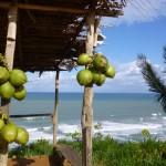 Coco à Serra Grande - départ du parapente