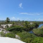 Entre rivière et mer à Bahia Brésil