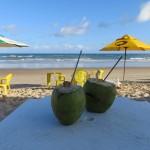 Noix de coco sur la plage au Brésil