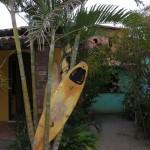 Surf Brésil